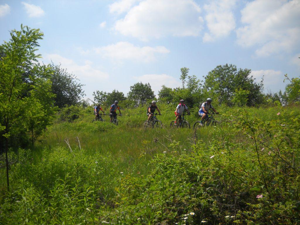 E-Bike Tour Monferrato