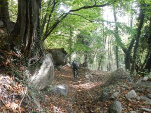 E-Bike Tour da Borgone a Prarotto MTB